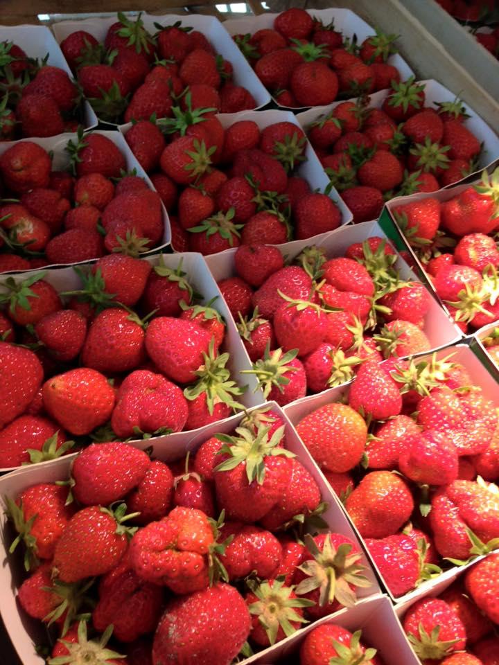 Les fraises en barquette sur nos points de vente