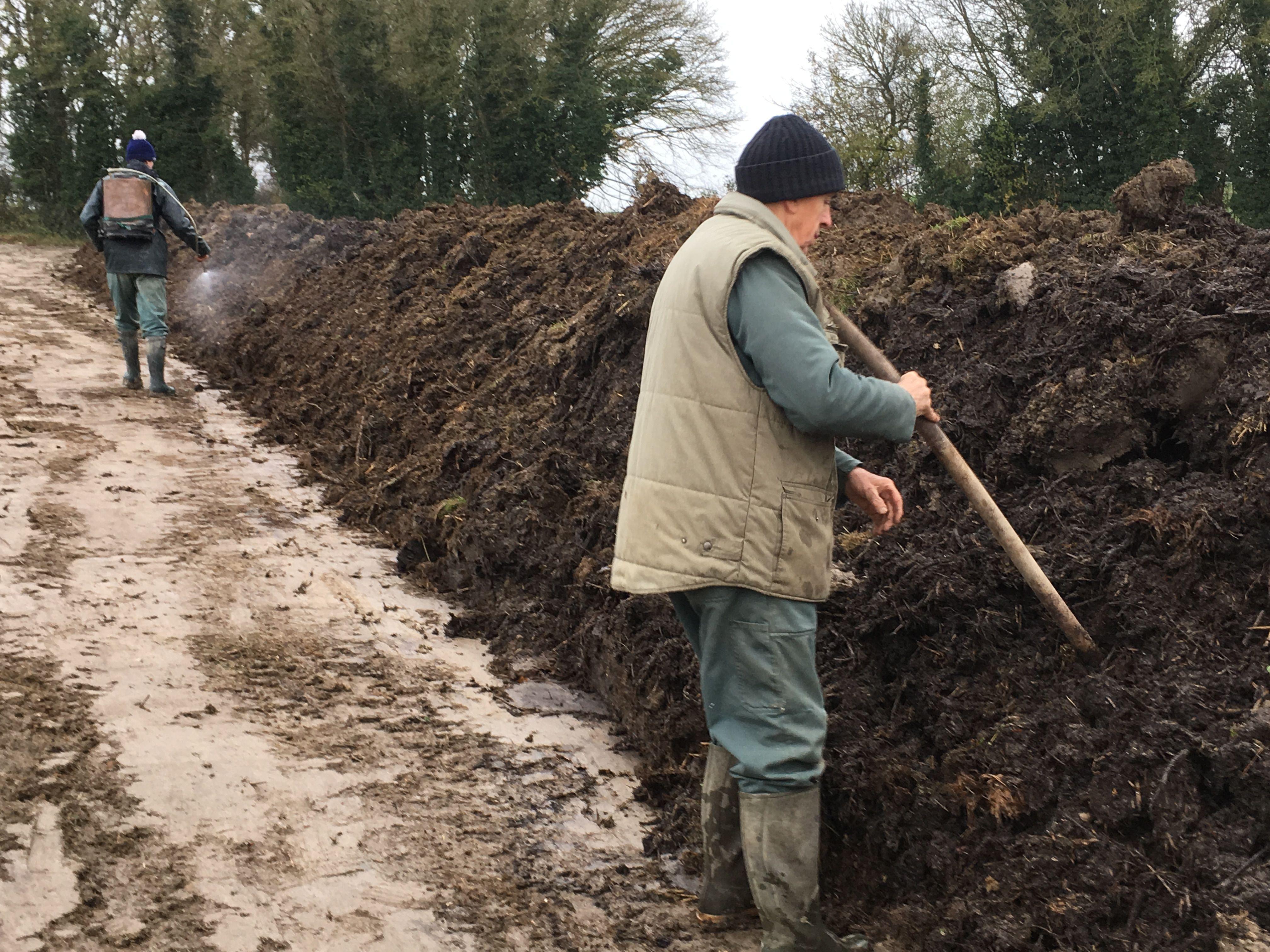 Les trous dans le compost sont tous les 2m